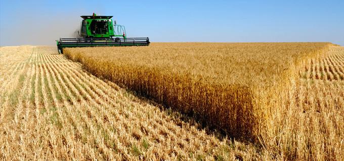 农业软件推荐