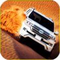 沙漠车神游戏