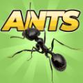 口袋蚂蚁模拟器游戏