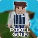 我的高尔夫球世界